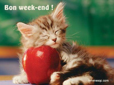 Bon week end vous tous - Bon week end a tous ...